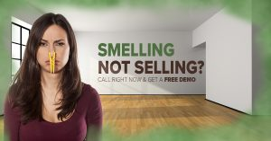 odor removal services